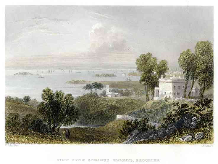 Brooklyn, New York, USA (Flatlands) (Flatbush) - View from Cowanus Heights, Brooklyn