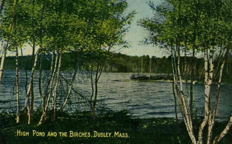 Dudley, Massachusetts, USA - High Pond and the Birches, Dudley, Mass.