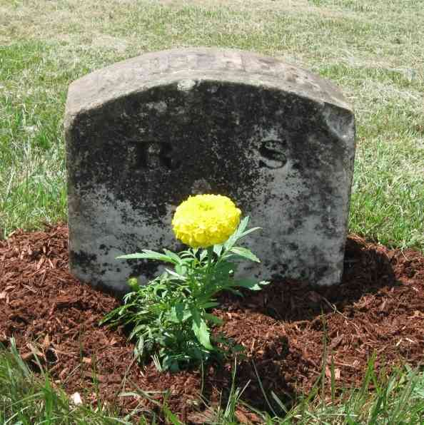 Six Inches Under - Gail put the stone back where it belonged. Then, we planted a flower...