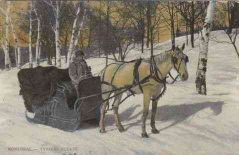 , Québec Province, Canada (Quebec) - Montreal - Typical Sleigh