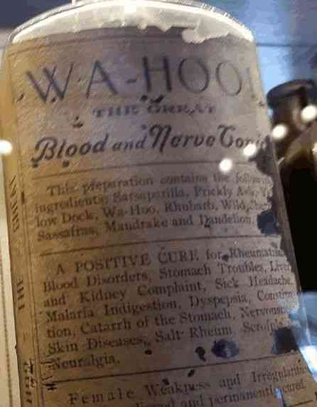 Detroit, Michigan, USA - Wa-Hoo Blood and Nerve Tonic